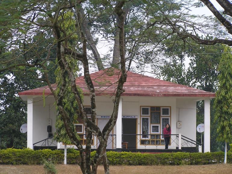 Cottages at aranya lodge
