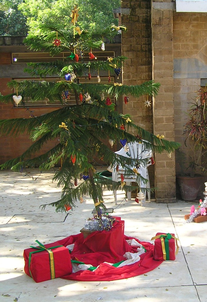 Christmas tree at Auroville