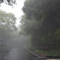 Driving in torrentialrain