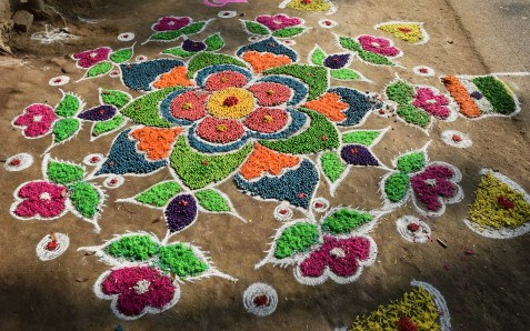 dyed peas and other vegetables for kolam
