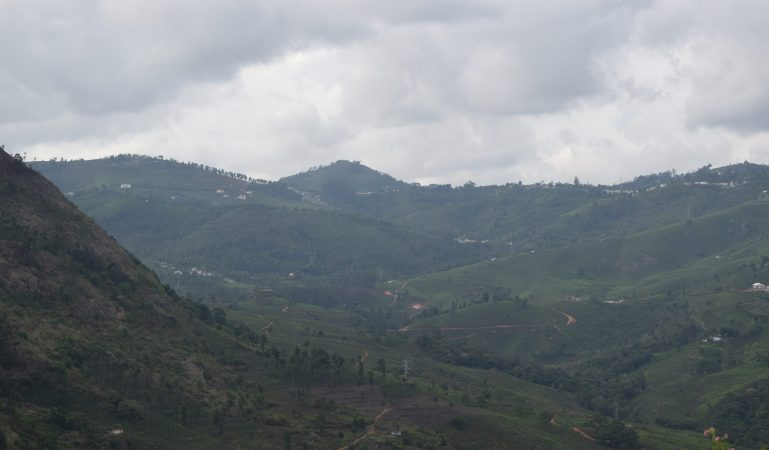 Verdant rolling hills