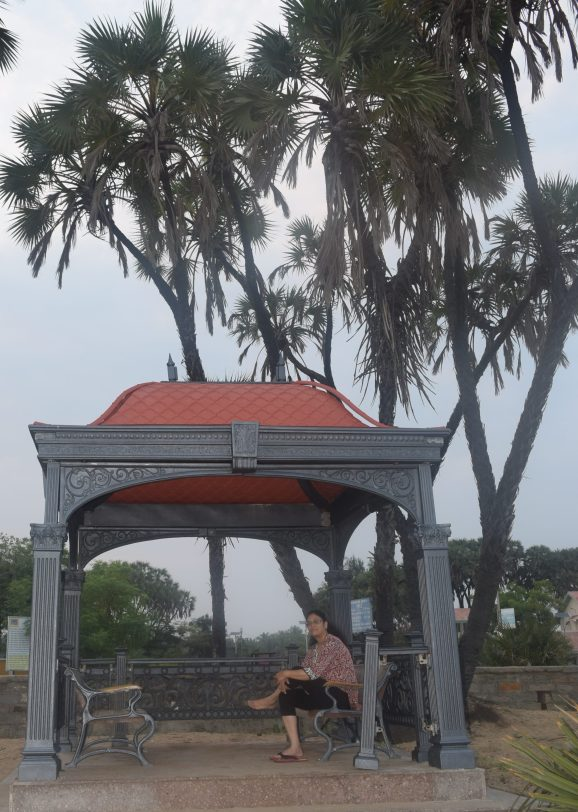 Hoka palms near the sitout pavilions along the Nagoa beach