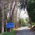 road to Wellington