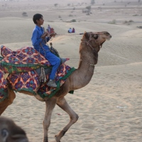 The Land Of Royals, Jaisalmer