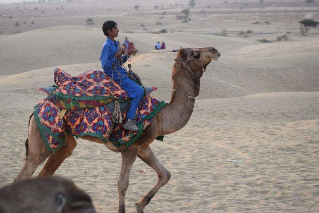 Young camel rider racing his ride