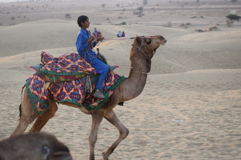 Young camel rider racing his ride
