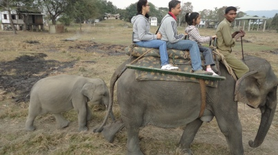 Babu accompanying us on safari...