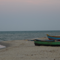 In Search Of Rama's Setu At Dhanushkodi