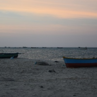 Exploring The Best Of Beaches Along The Indian Coastline With Expedia