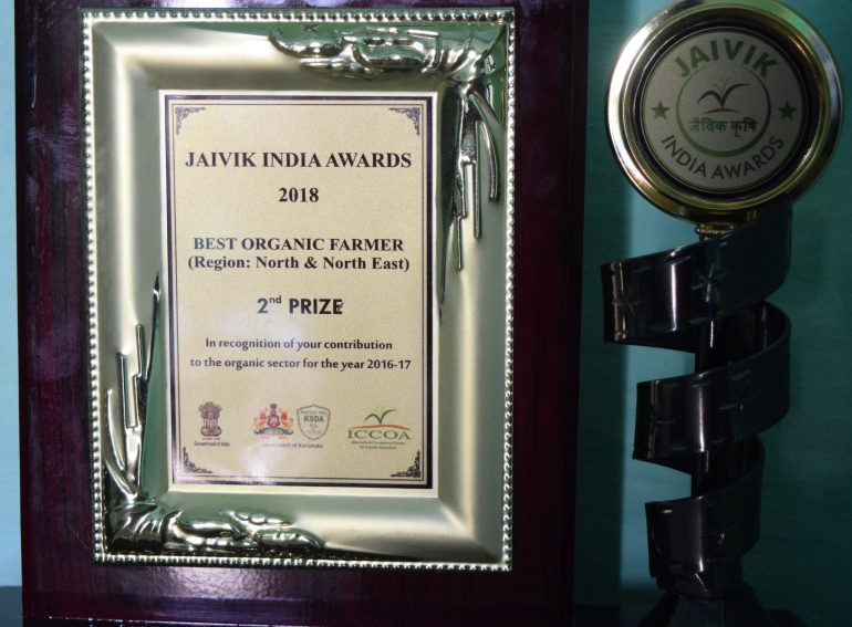 one of many awards and accolade