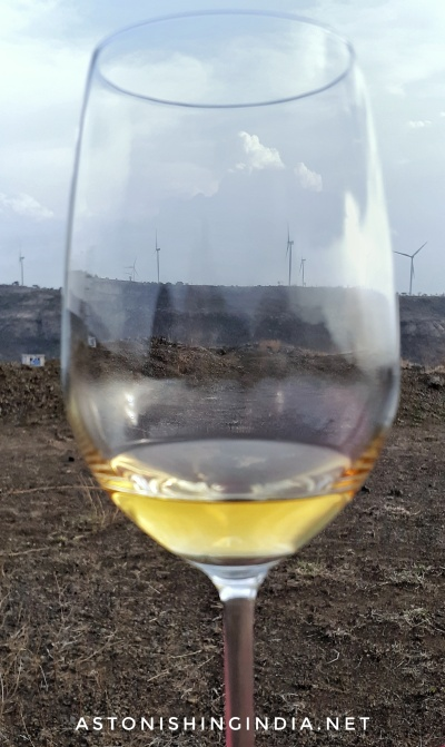 Wine and Windmills