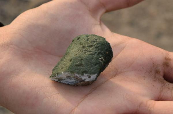 A porous rock