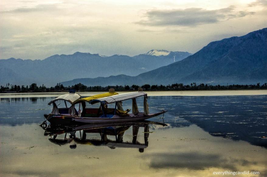 Shikara. Picture contributed by Himanshu Barsania.