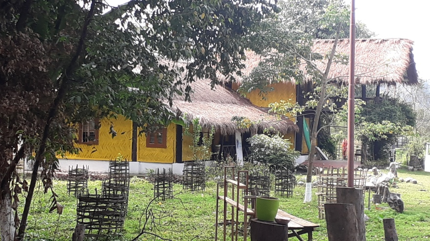Thatched rooms with indigenous architecture