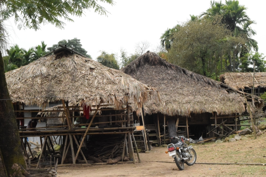Huts of tribal village