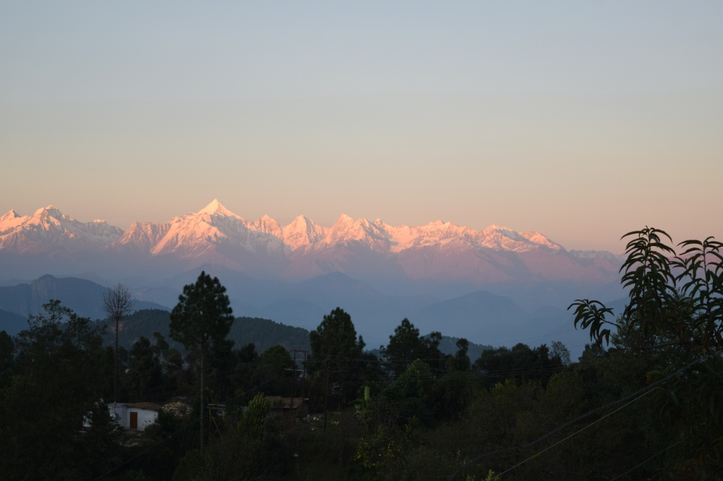 Pink hue on himalayas at sunset